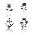 wild flowers drop shadow black glyph icons set vector image vector image