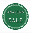Green Amazing Icon Badge Label or Sticke vector image