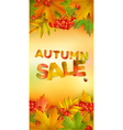 Autumn sale vertical banner vector image vector image