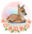 beautiful watercolor realistic fawn in a romantic vector image