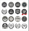 collection retro vintage badges and labels 3 vector image vector image