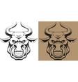 Ferocious bull vector image