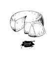 gouda cheese block drawing hand drawn food vector image
