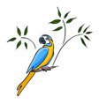 hand drawn yellow parrot vector image vector image