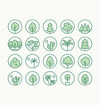 trees plants green line icon vector image vector image