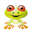 Abstract Frog Isolated on White Background vector image vector image