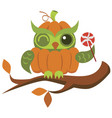 cartoon halloween orange pumpkin owl flat poster vector image