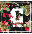 Christmas Poinsettia Flowers Graphic Design vector image vector image