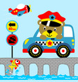 funny officer bear crossing a bridge with his vector image vector image