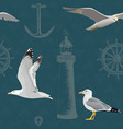 naval seamless pattern hovering and resting gulls vector image vector image