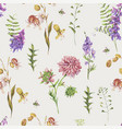 watercolor seamless pattern with summer meadow vector image vector image