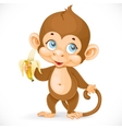 Cute baby monkey with banana stand on a white vector image