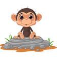 cute bamonkey cartoon sitting on rock vector image vector image