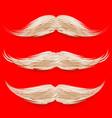 santa s mustache christmas realistic white vector image vector image