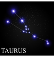 Taurus Zodiac Sign with Beautiful Bright Stars on vector image vector image