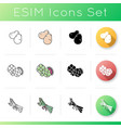 veggies icons set vector image vector image