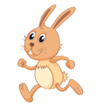 a rabbit vector image
