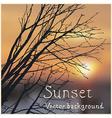 dark sunset vector image