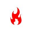 fire flame logo stock icon vector image vector image