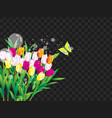 flowers and butterfly landscape on black vector image