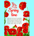 poster of spring tiem poppy flowers vector image vector image