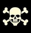 white skull icon vector image vector image