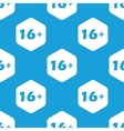 Age restriction hexagon pattern vector image vector image