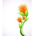 Elegance with orange flowers vector image