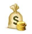 moneybag and coins vector image