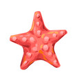 starfish tropical underwater sea vector image
