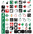 apples lettering and heart vector image