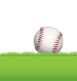 baseball in grass vector image vector image