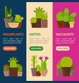 cartoon cactus plant in pots banner vecrtical set vector image vector image