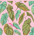 green leaves on a pink background vector image vector image