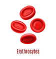 isolated erythrocyte cells in realistic style vector image