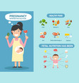 pregnancy nutrition food healthcare infographics vector image vector image