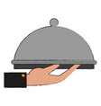 restaurant dish dome vector image vector image