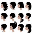 Set of black hair styling for woman vector image