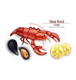 seafood cancer and mussels realistic on vector image
