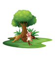 A pig standing under the big tree vector image vector image