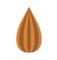 almond nut flat color art vector image