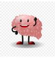 brain human internal organ realistic vector image