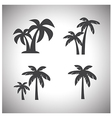 coconut tree icon vector image vector image
