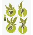 collection of fresh and health olive oil symbols vector image vector image