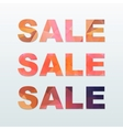 Colorful Sale Labels Set vector image