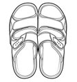 Flip flop sandal shoes vector image