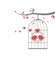love birds on cage vector image