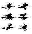 witch halloween icons set vector image vector image