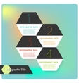 Abstract flat hexagon infographics options banner vector image vector image