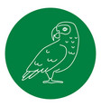 african grey parrot icon in thin line style vector image
